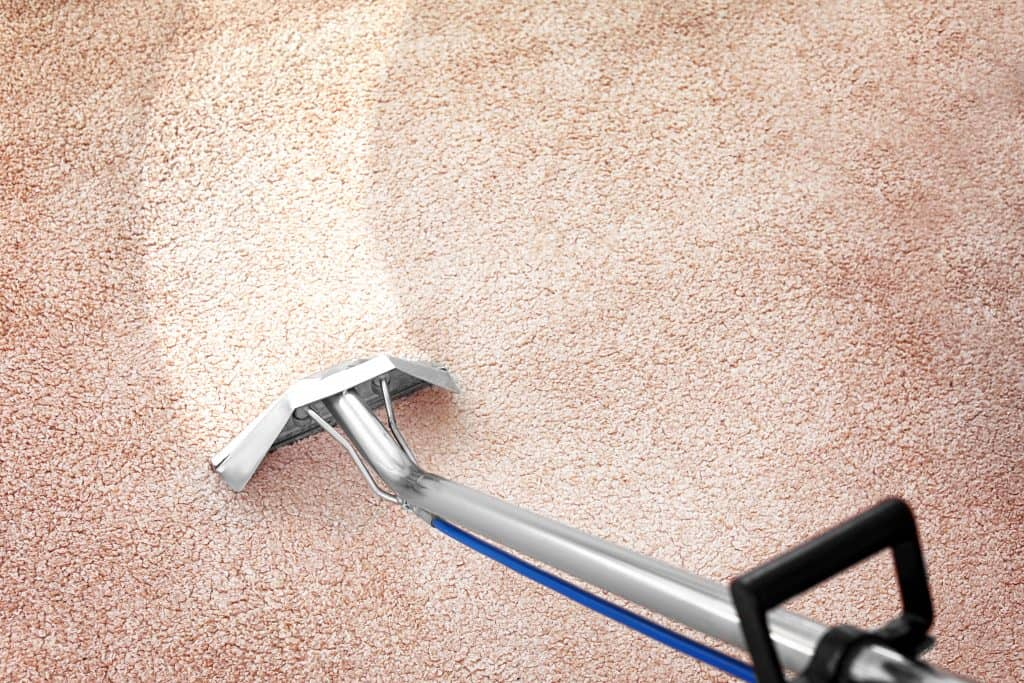 a carpet being steam cleaned